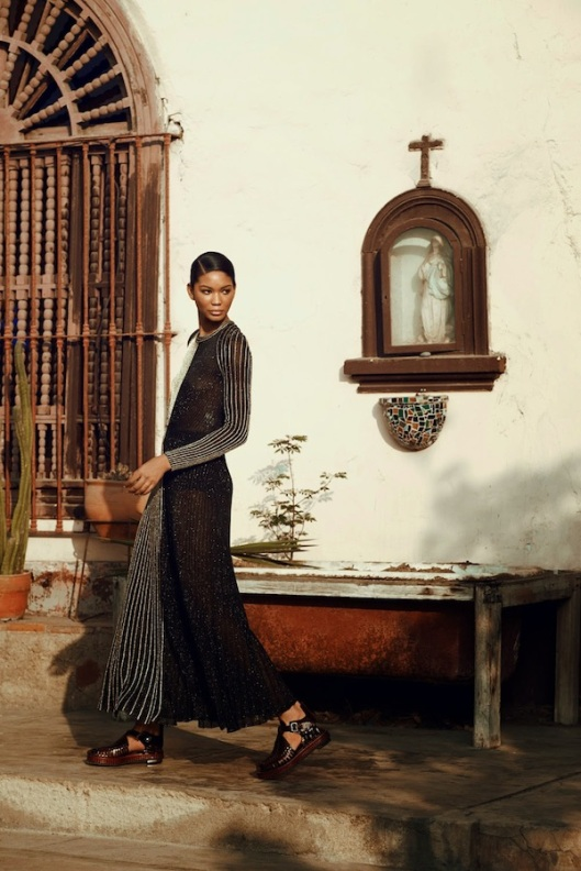Chanel-Iman-covers-Harpers-Bazaa (6)